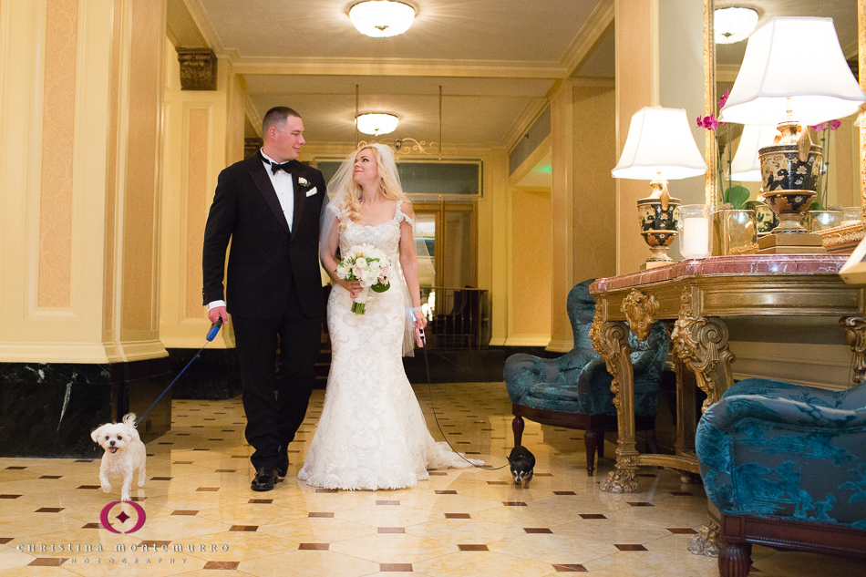 Bride and Groom walk Chihuahua and Maltese dogs in the Omni William Penn Urban Room Wedding Photography Pittsburgh Wedding Photographer