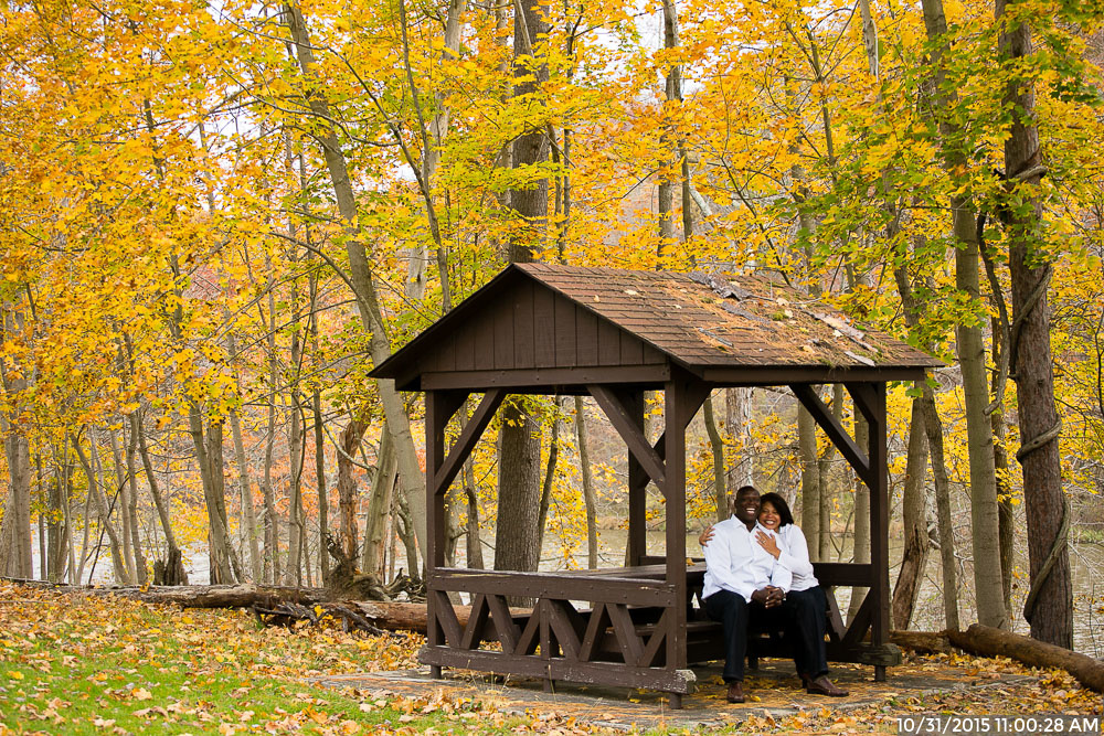 Fall North Park Engagement Session with Trees with Yellow Leaves